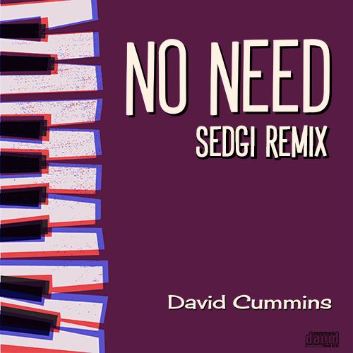 No need remix cover